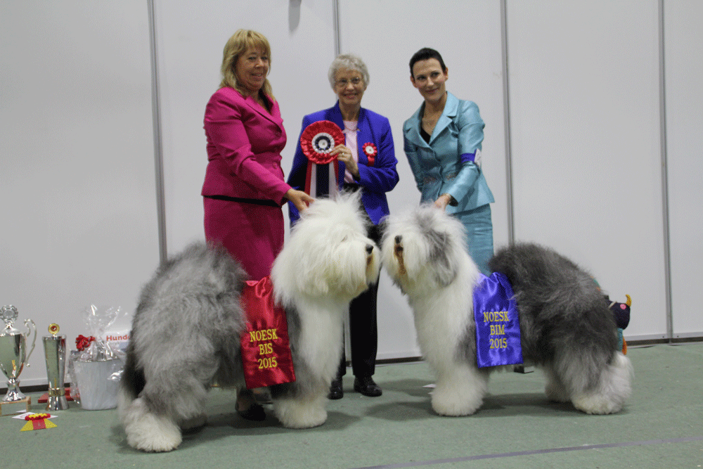 Results NOESK Speciality Show 2015